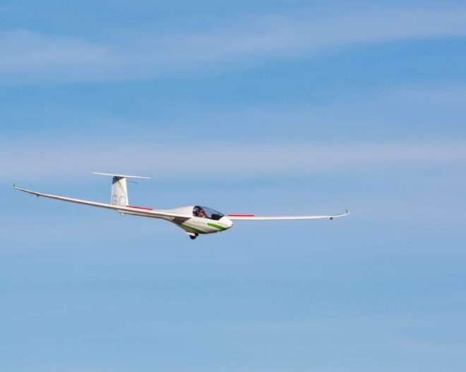 Alisport airplane propulsion system MGM COMPRO cooperation